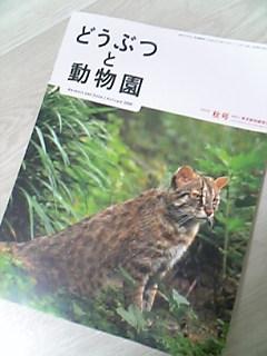 どうぶつと動物園 平成20年 秋号